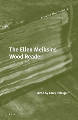 The Ellen Meiksins Wood Reader