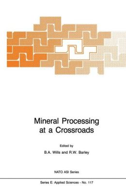 Mineral Processing at a Crossroads: Problems and Prospects
