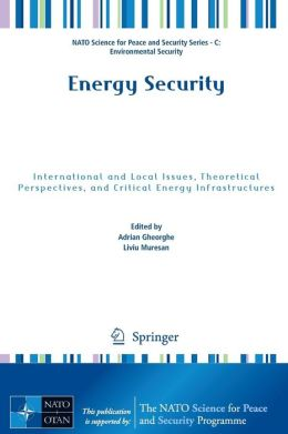 Energy Security: International and Local Issues, Theoretical Perspectives, and Critical Energy Infrastructures