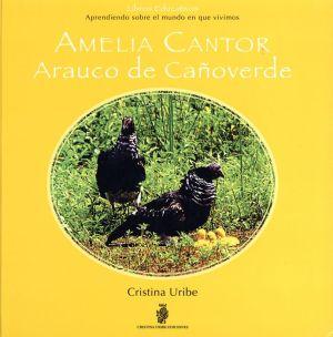 Amelia Cantor Arauco De Canoverde