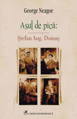 Asul de pica: Stefan Aug. Doinas (Romanian edition)