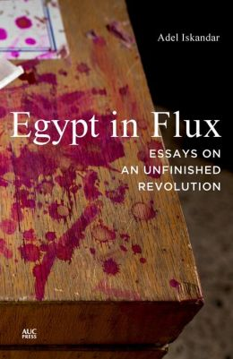 Egypt in Flux: Essays on an Unfinished Revolution