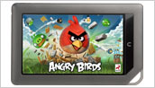 NOOK Color Angry Birds